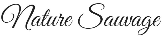 Atelier Nature Sauvage-Fleuriste Mariage Lyon Atelier Floral
